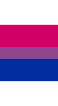 A society's binary lens on bisexuality