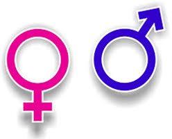 Sexual Regret, Evolution vs. Emotional Pressures