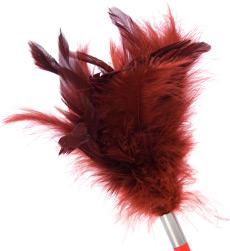 Tantra feather teaser - tickler, <%#Customer.Current.Culture.FormatMoney(23.99m)%>