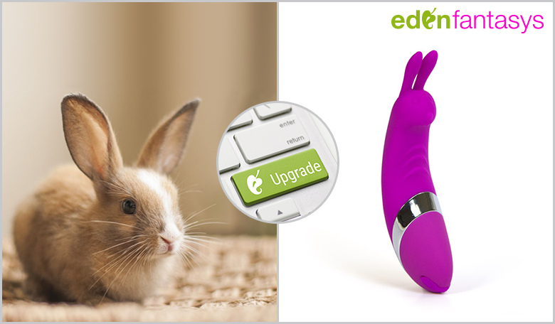C bunny rechargeable