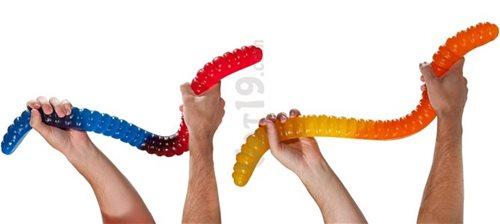 Snake Sex Toy