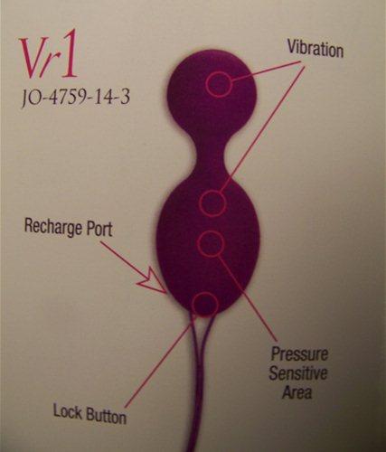 Manual Vr1