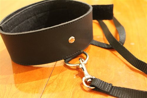 Black leash and collar detail