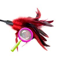 Starburst fantasy feather
