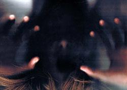 The Spiritual Sexual Predator — A Cautionary Tale