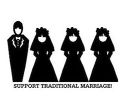 """The """"Traditional"""" Family? Anything but."""