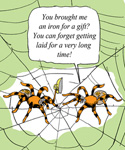 Beware of (Male) Spiders Bearing Gifts. They Just Want Sex ...