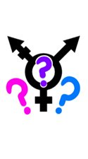 Questions and Curiosity: Things NOT to ask transwomen and transmen!
