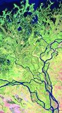 Define This: The Frenulum Delta