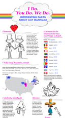 Interesting facts about gay marriage - full version, preview