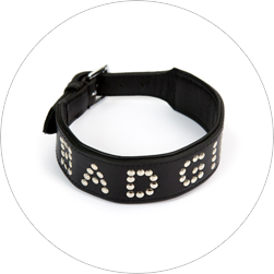 Bad girl collar